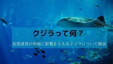 クジラって何?仮想通貨の相場に影響を与えるクジラについて解説